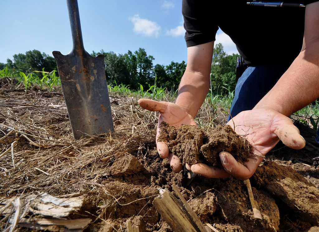 Erde in der Hand - Soil Health CC BY