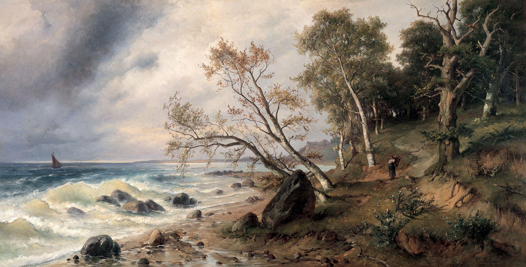 Ostseeküste auf der Insel Vilm