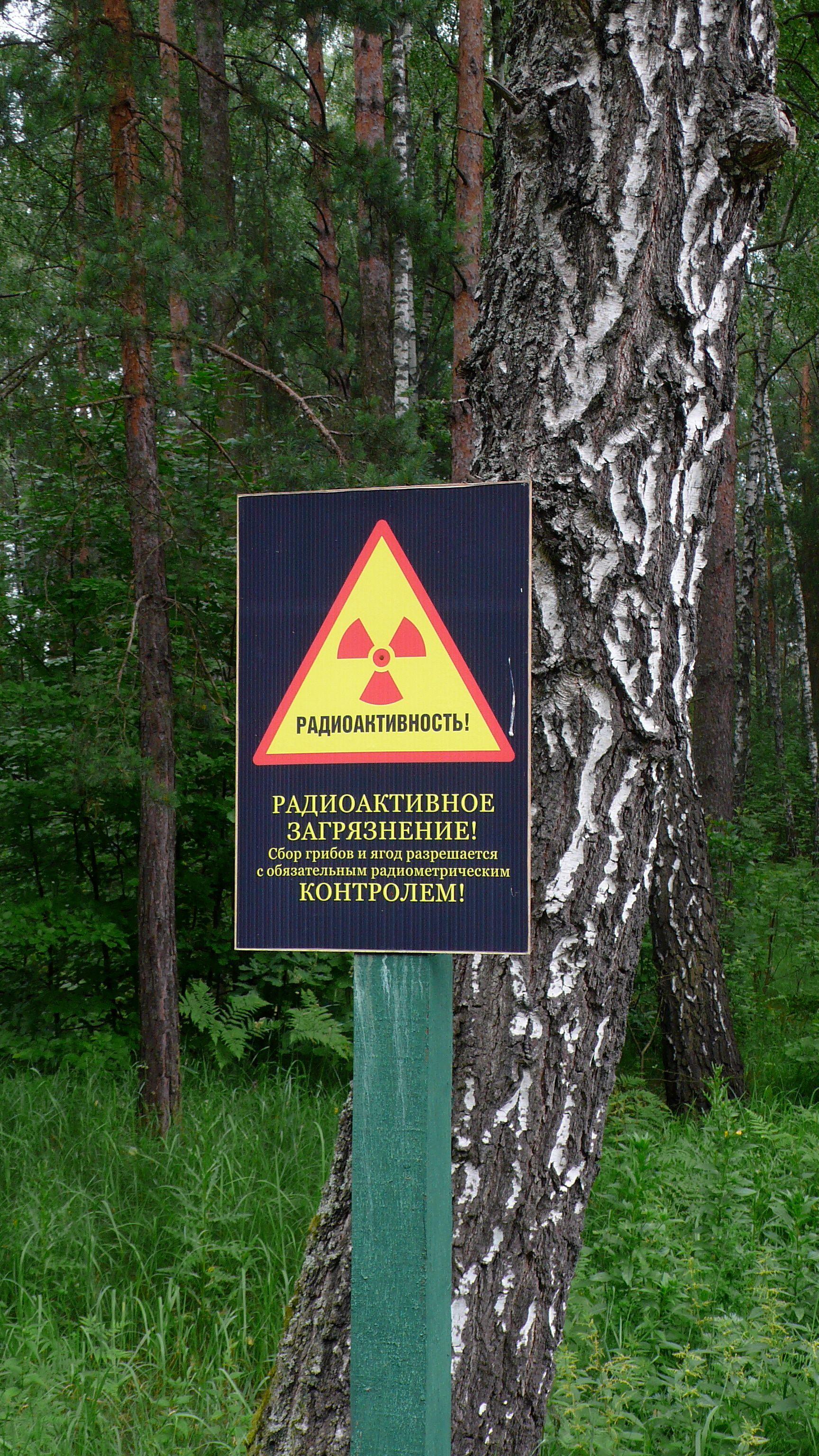 Warnung vor Radioaktivität in Weißrussland