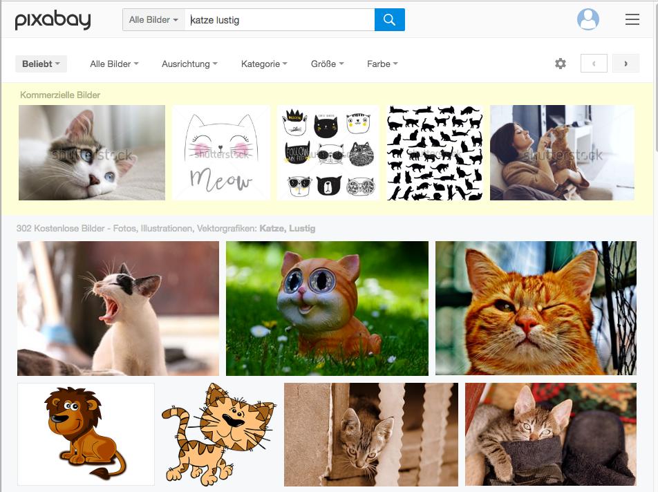 Screenshot: Suchergebnisse bei pixabay